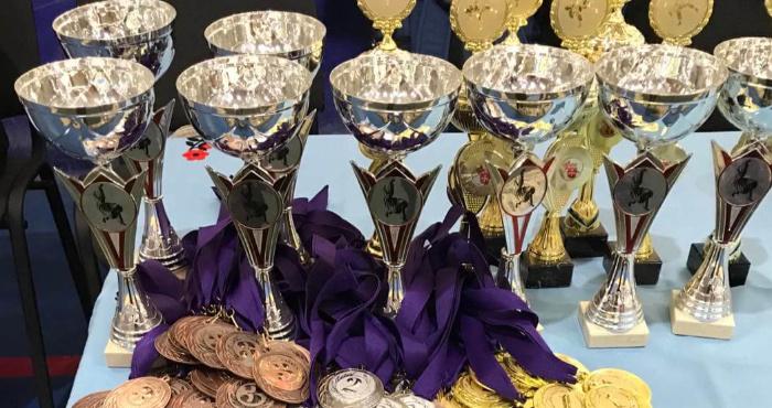 Волиняни здобули медалі різного ґатунку на всеукраїнському турнірі з дзюдо