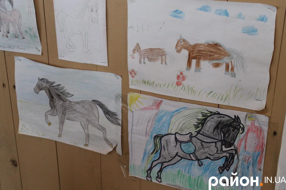 Малюнки вихованців «Baby Rider» на вході до критого манежу
